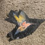 Vogel-pochoir 2.