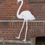 Wand-Storch