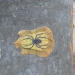 Groß-Spinne