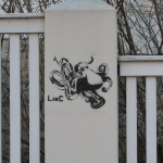 LINC octopus