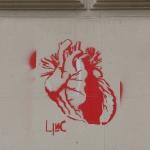 LINC-Herzblut