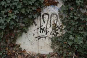 5a-Graffiti, 722, Vor Unterführung Francke_MG_5692