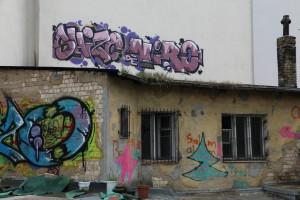 1h-Dachgarten_IMG_7360