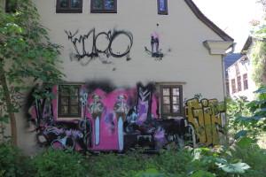 Hauswand_IMG_7976