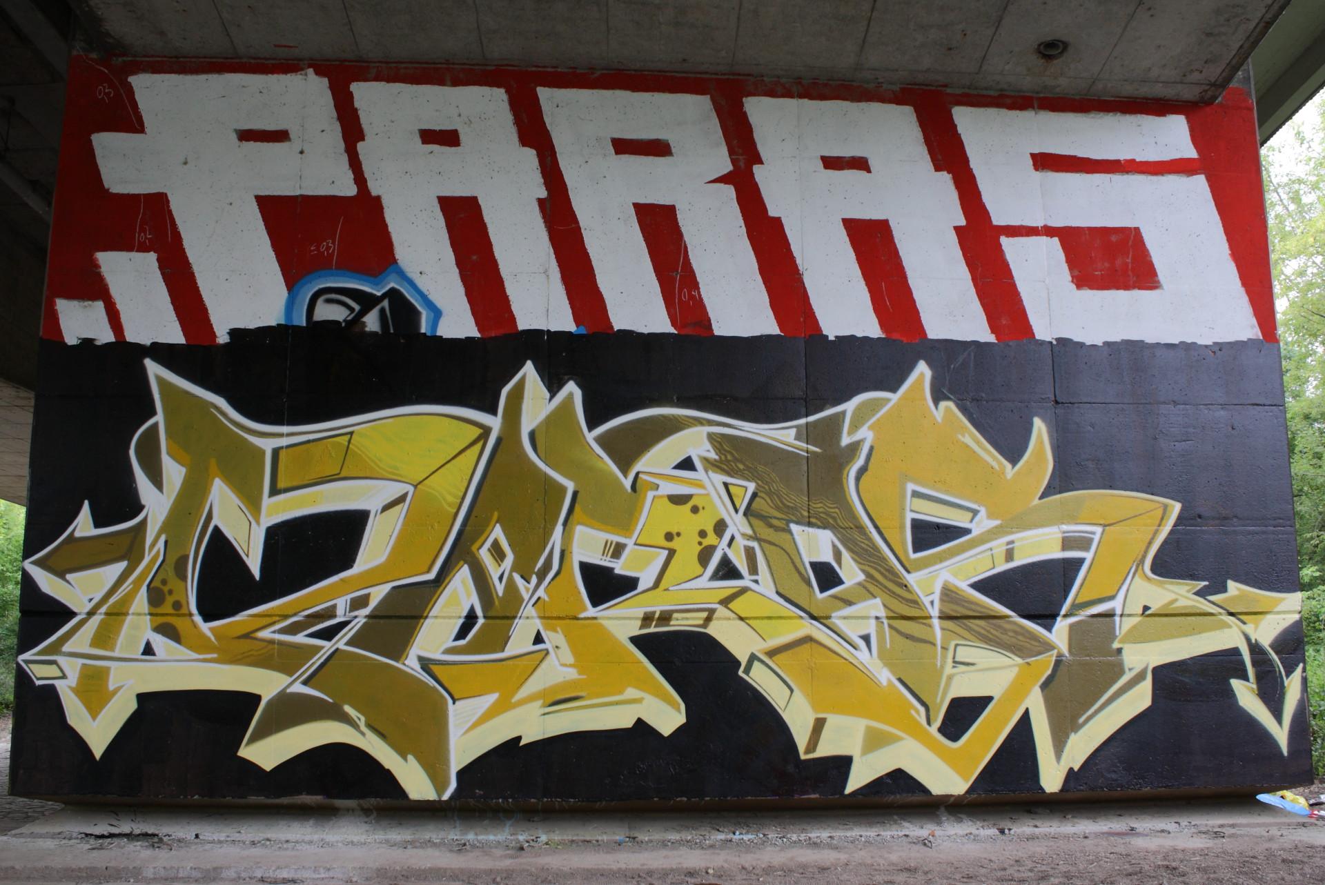 PARAS, schwarz-gelb_MG_6295