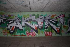 7-AKUL_MG_6447