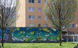 101-ENJOY im Frühling_IMG_5232v
