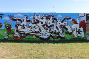 173-COPSA, 104, Wild Cans_IMG_7186