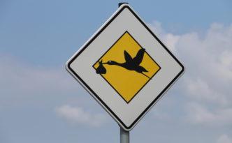 25-Schild mit Storch_IMG_7162v