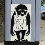 Wer hilft dem Affen?